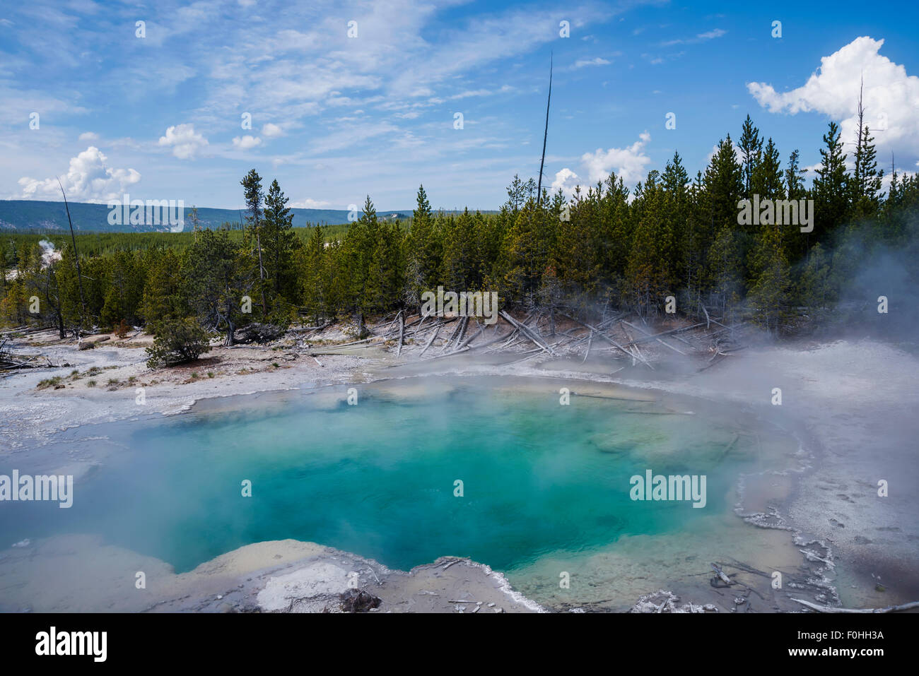 Emerald Spring is a hot spring located in Norris Geyser Basin of Yellowstone National Park, Wyoming, USA. - Stock Image