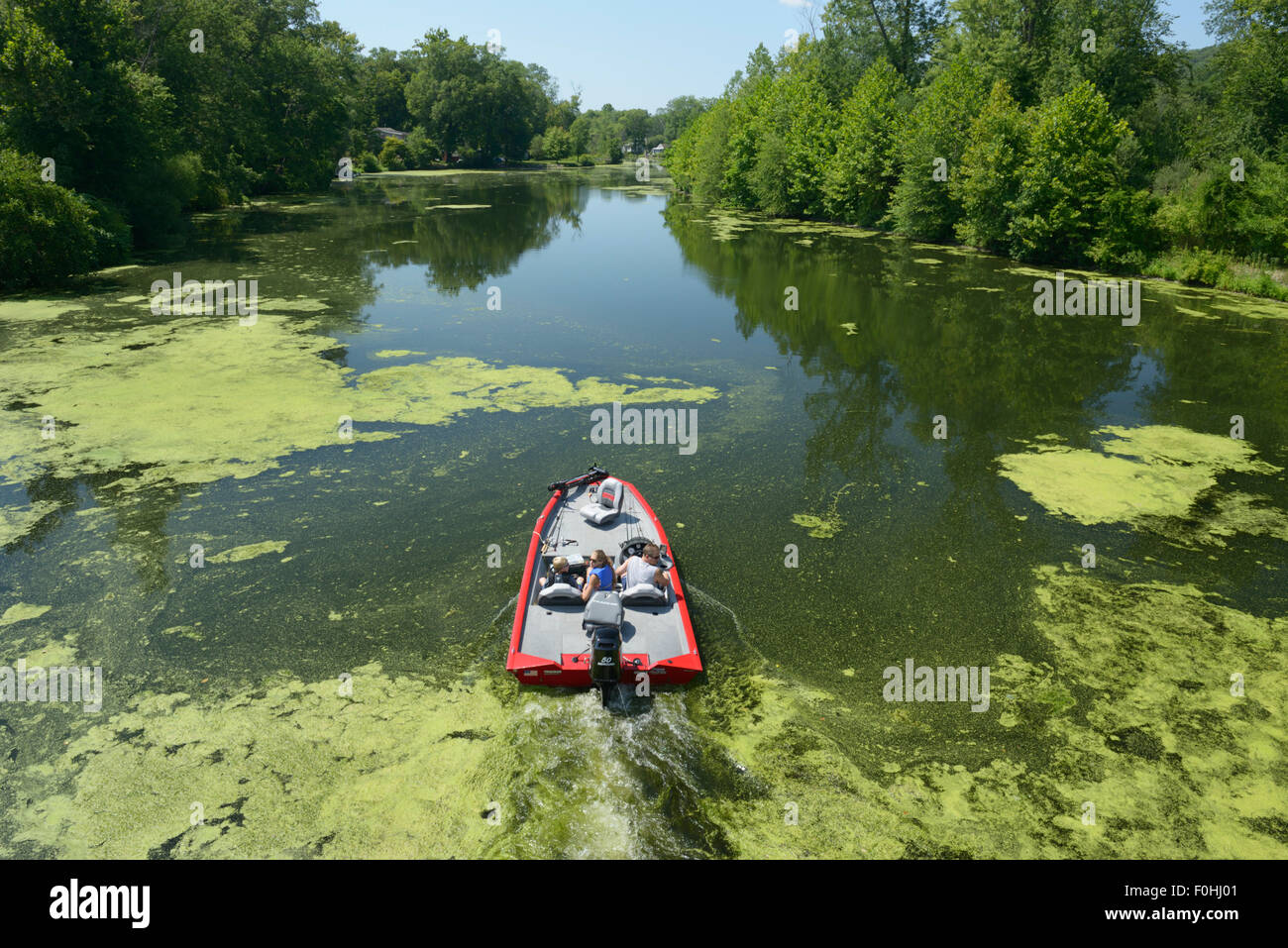 People in boat moving through polluted water undergoing eutrophication and an algae bloom, Ramapo River, NJ - Stock Image