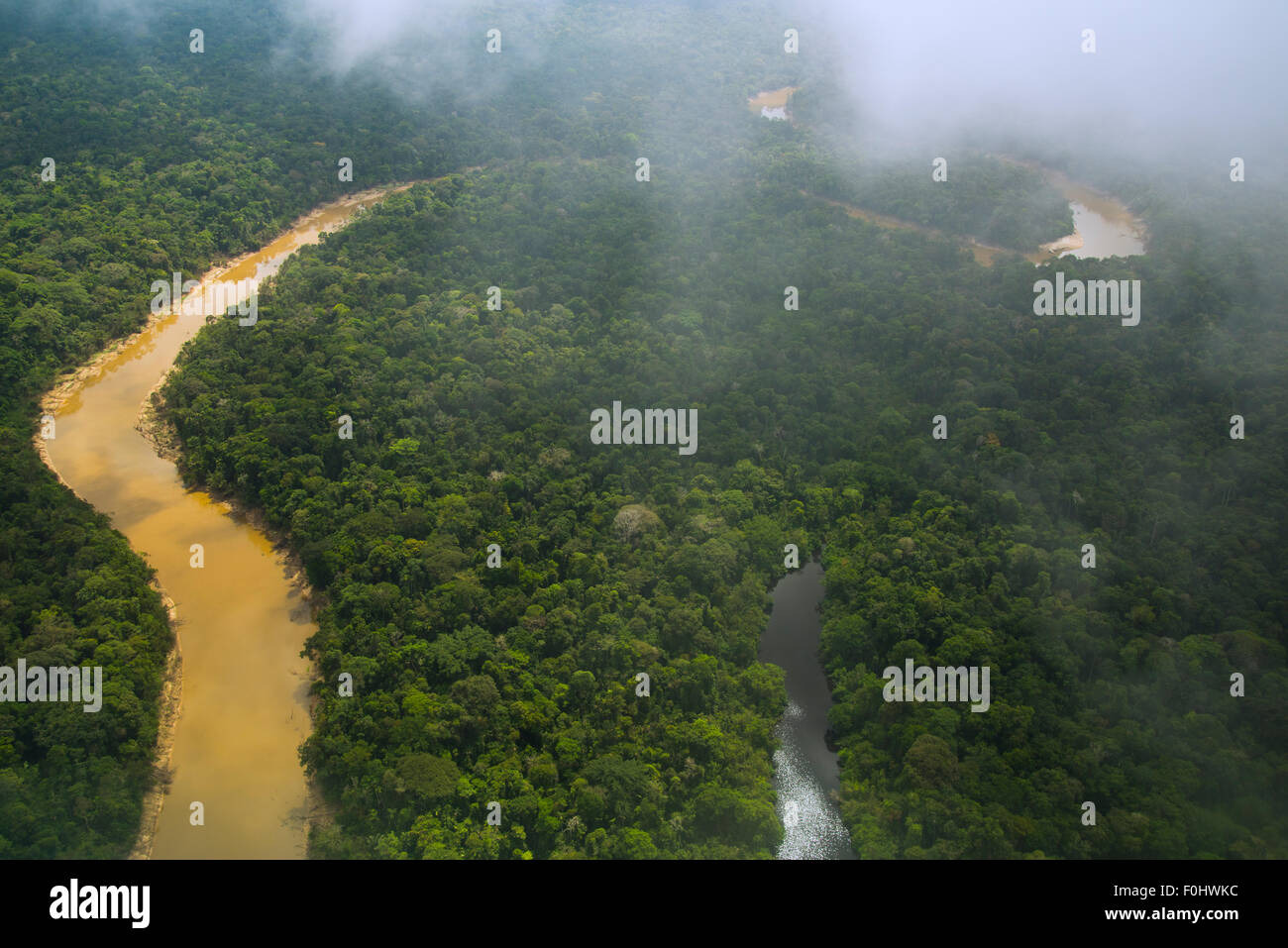 Rainforest aerial. Primary forest, Yavari Miri River and oxbow lake, between Iquitos, Peru and Brazilian border - Stock Image