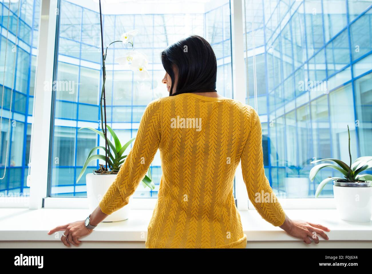 Back view portrait of a businesswoman standing in office near window - Stock Image