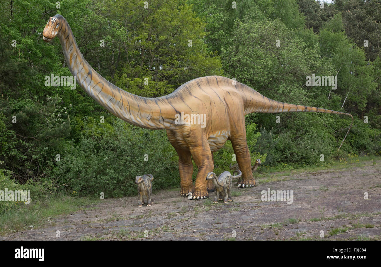 Diplodocus a large herbivorous extinct sauropod dinosaur of the Jurassic period Dinosaurier Park Germany Stock Photo