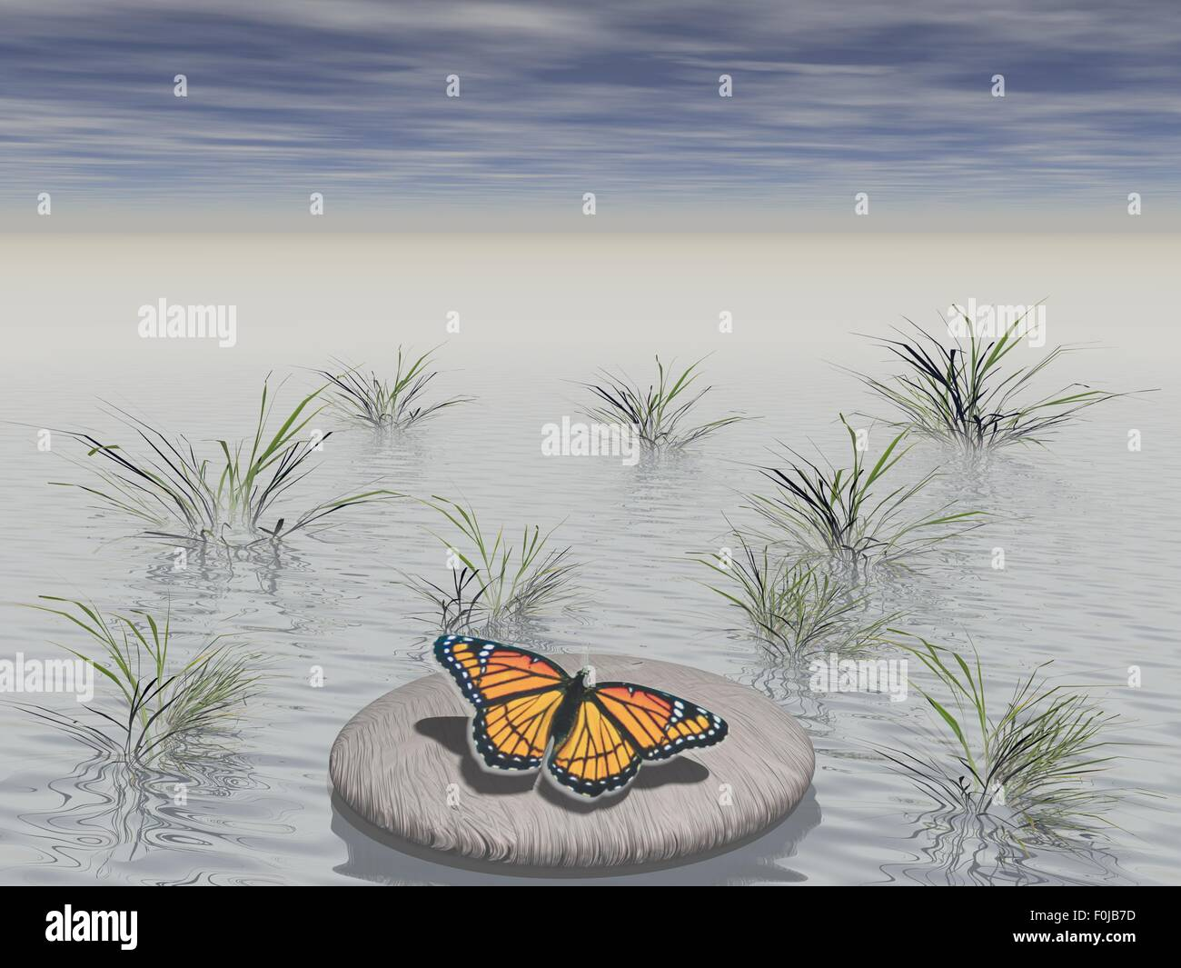 butterfly laid on a stone surrounded with water - Stock Image
