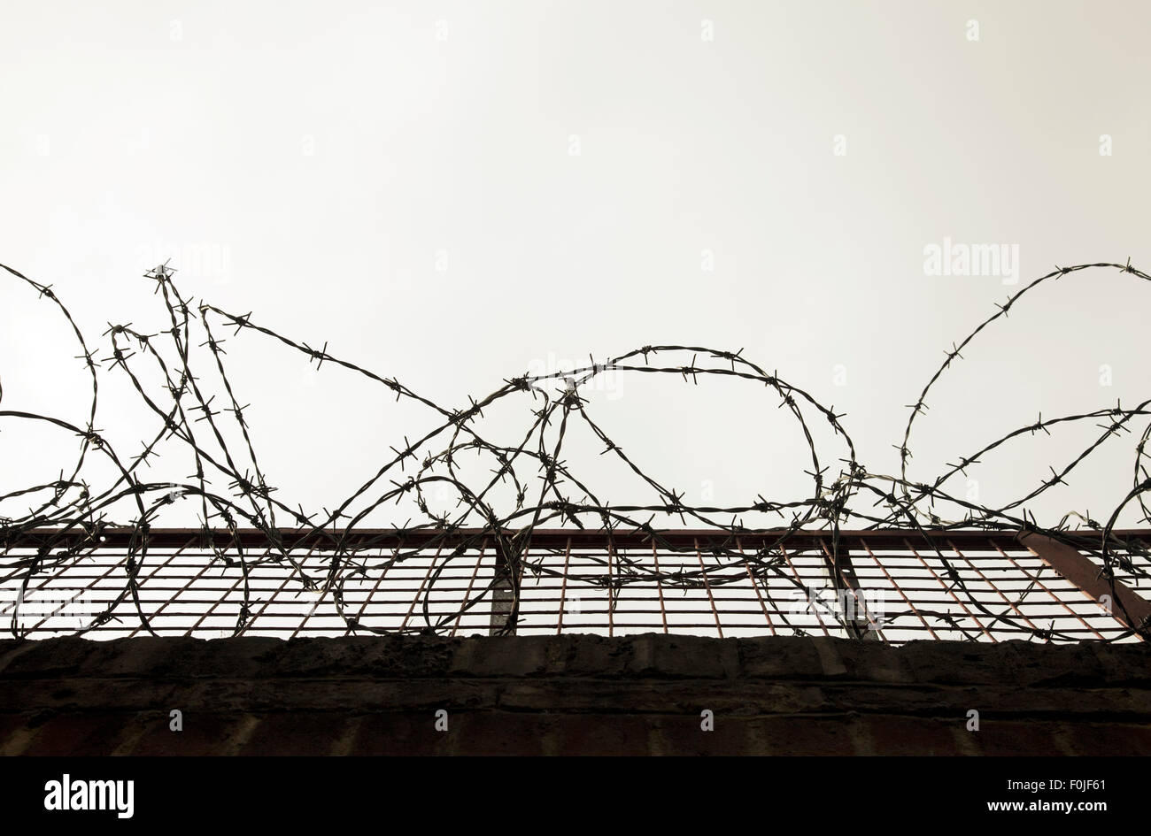 Barb Wire Fence - Stock Image