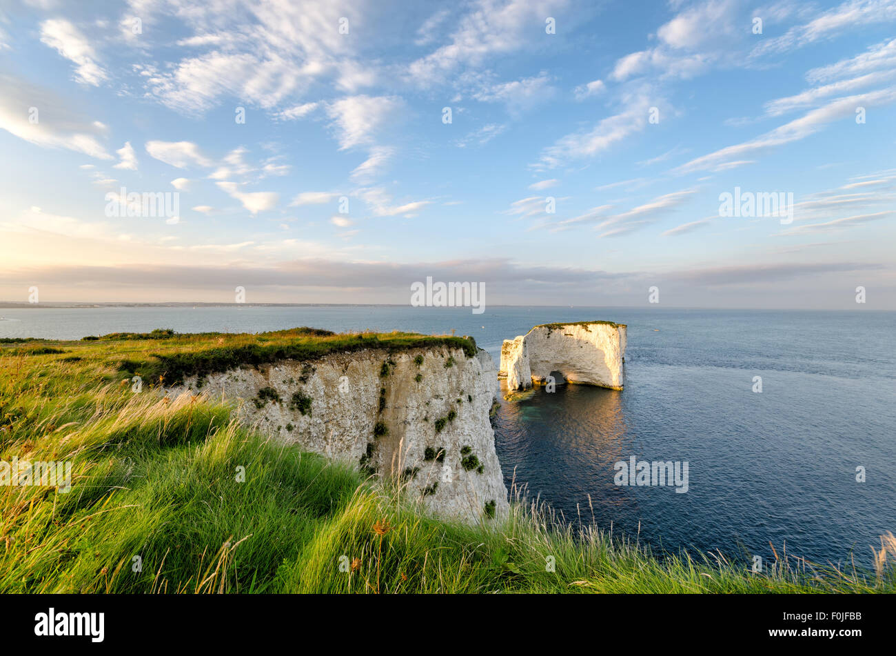 Old Harry Rocks, steep chalk cliffs and sea stacks near Swanage on Dorset's Jurassic Coast Stock Photo