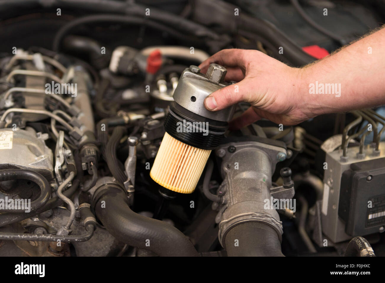 A car mechanic fits an oil filter to a car during general maintenance - Stock Image