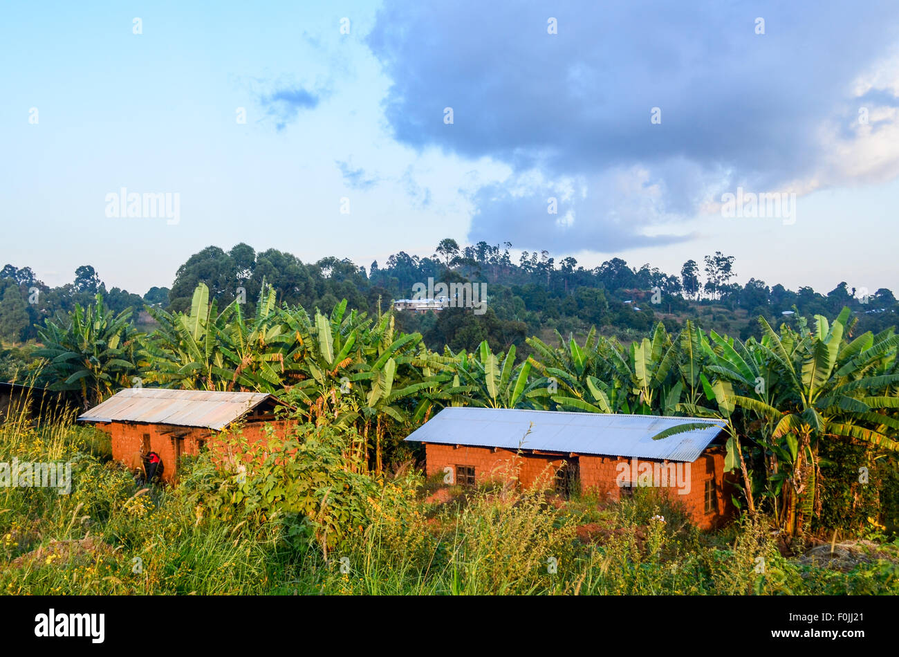 Houses in rural Cameroon - Stock Image