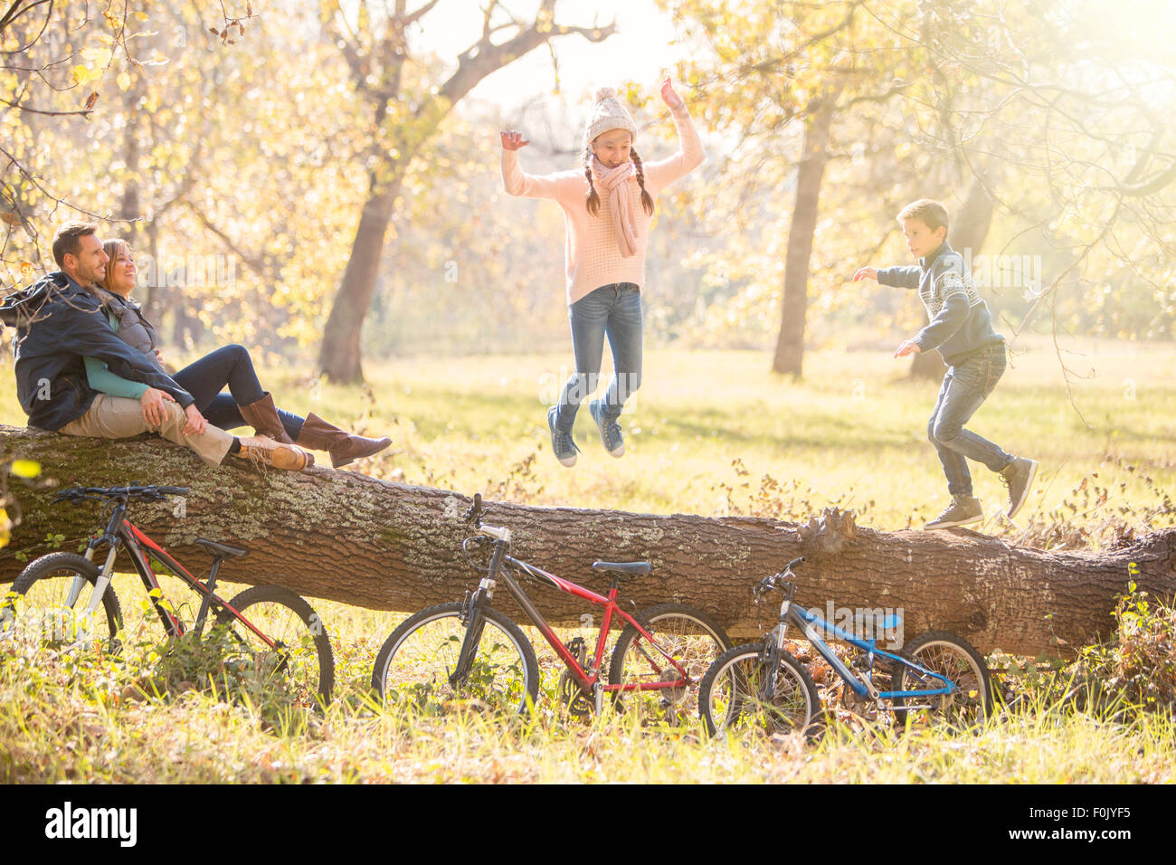 Family playing on fallen log in autumn woods Stock Photo