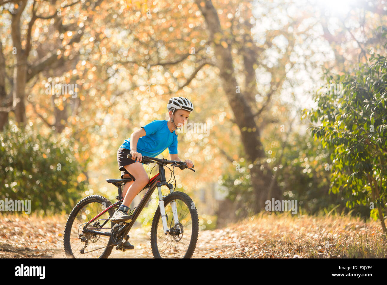 Boy mountain biking on path in woods - Stock Image