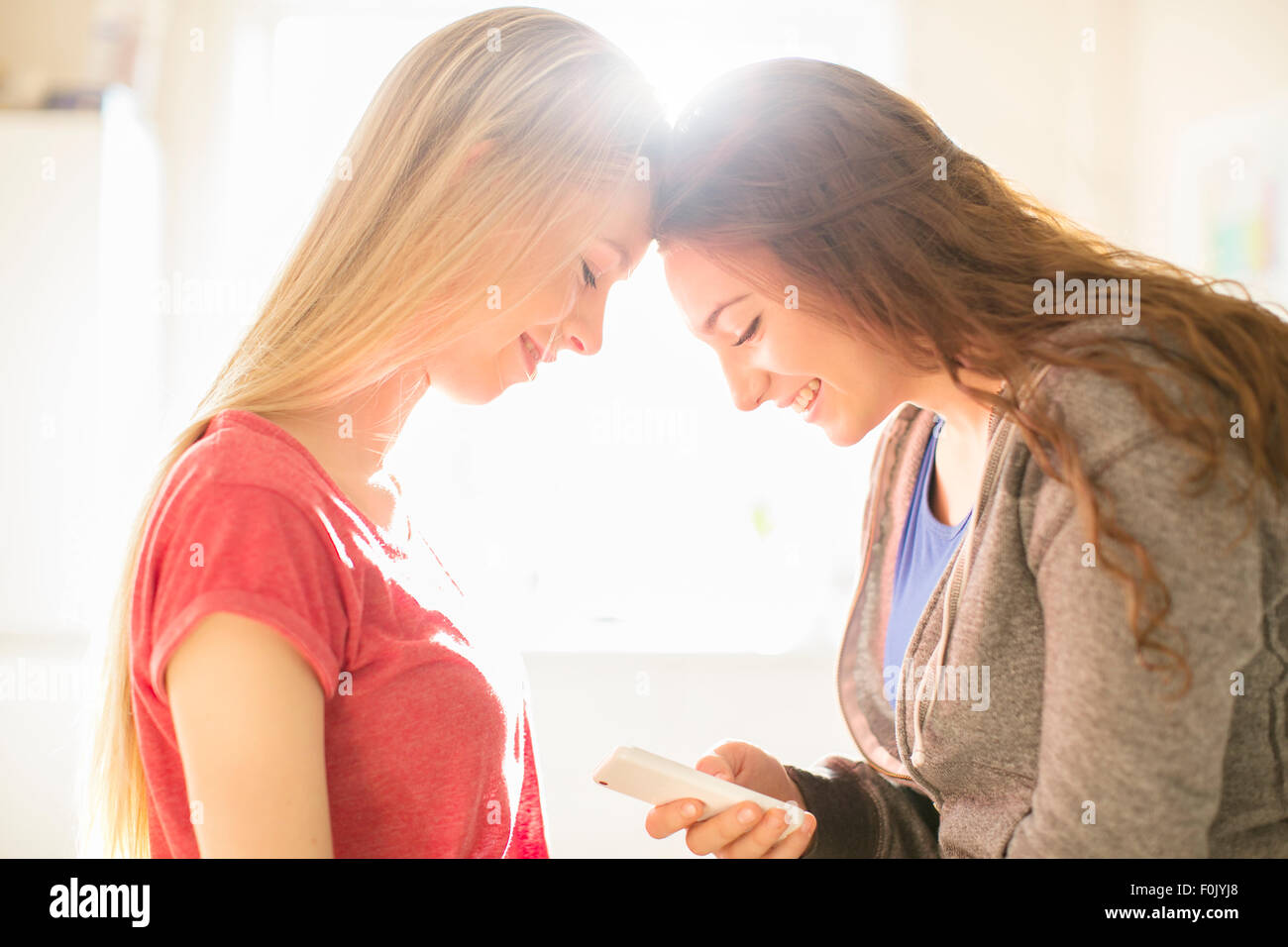 Teenage girls texting with cell phone head to head - Stock Image