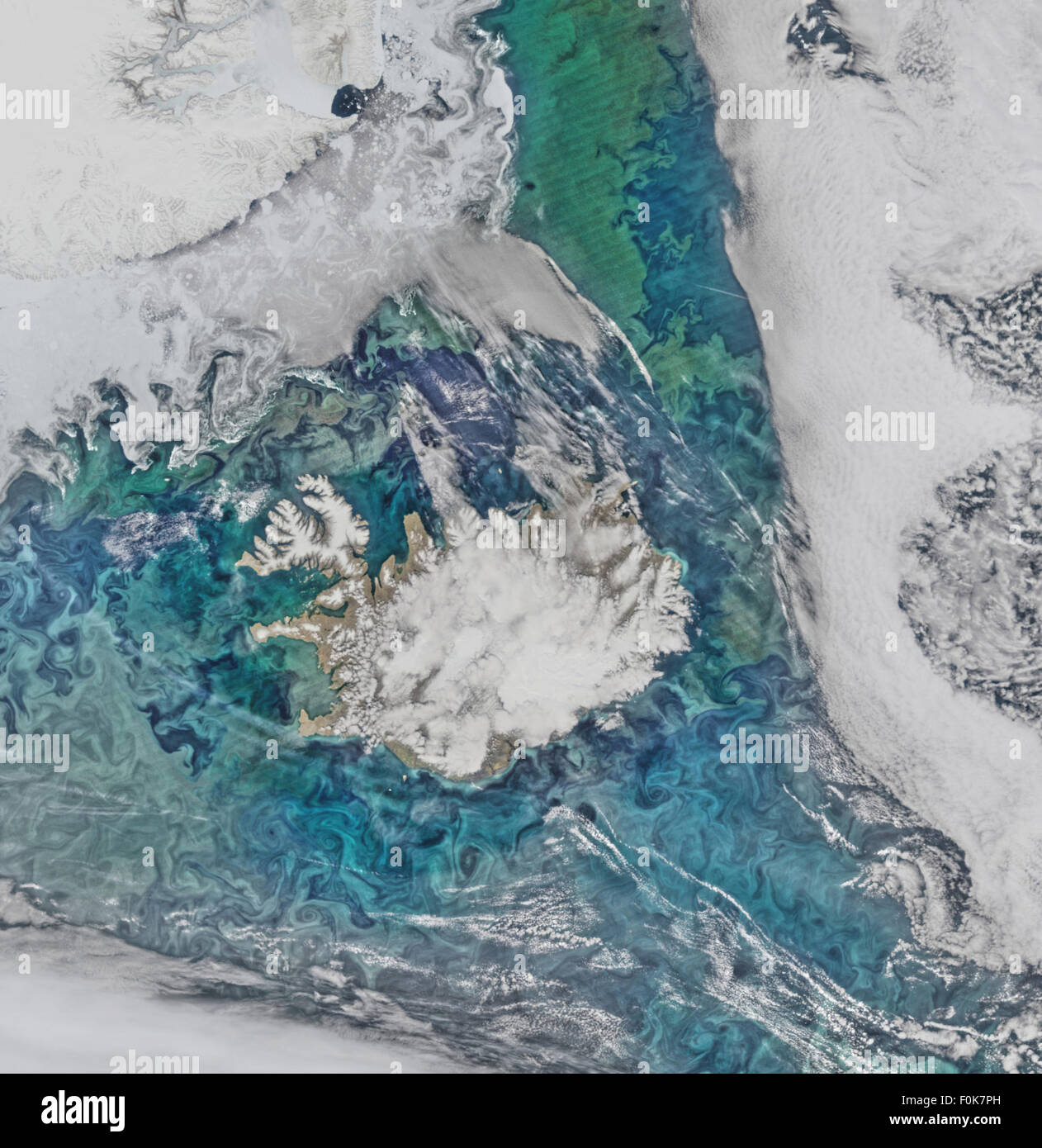 Phytoplankton communities and sea ice limn the turbulent flow field around Iceland in this Suomi-NPP/VIIRS scene - Stock Image