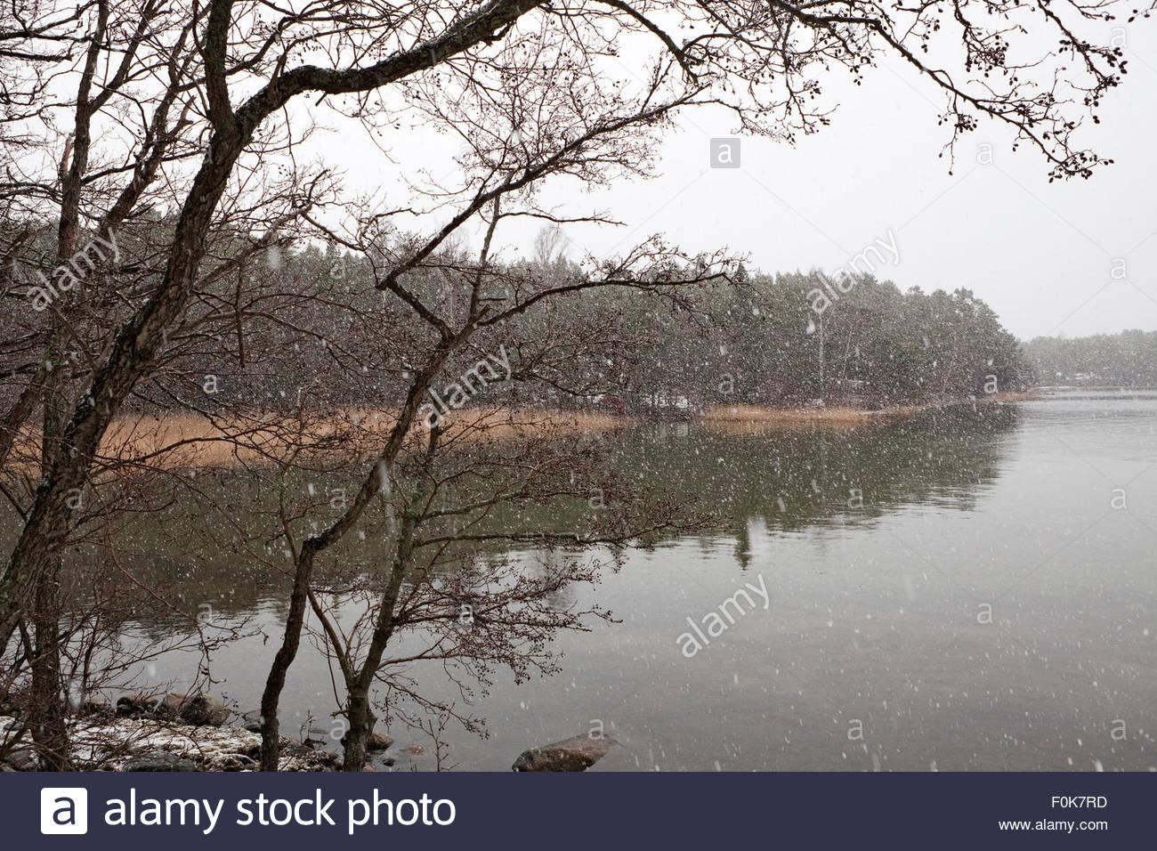 It's raining sleet - Stock Image