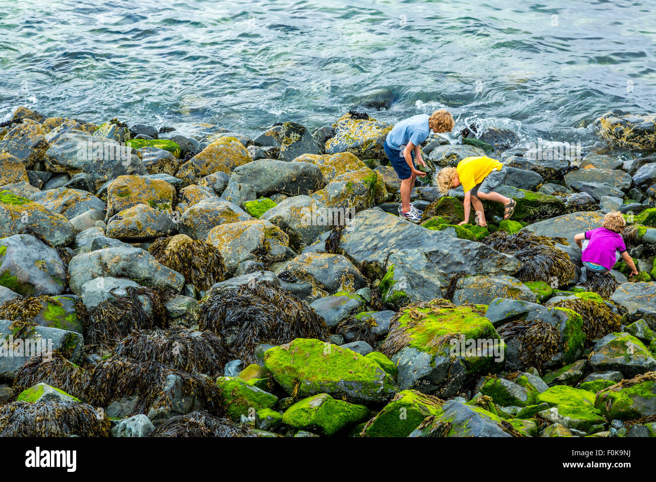 Children plating in rock pools in St. Ives, Cornwall, UK - Stock Image