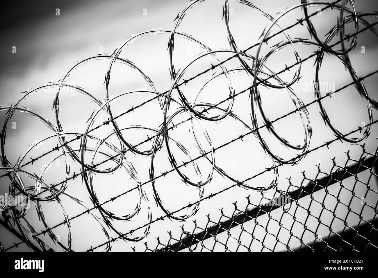 Barbed Wire Fence. Prison Fence in Black and White Closeup. - Stock Image