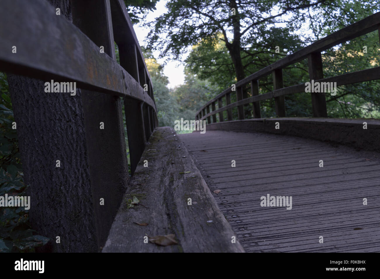 A short, wooden bridge found along the North Downs Way in Surrey, UK. Shot from a low angle. - Stock Image