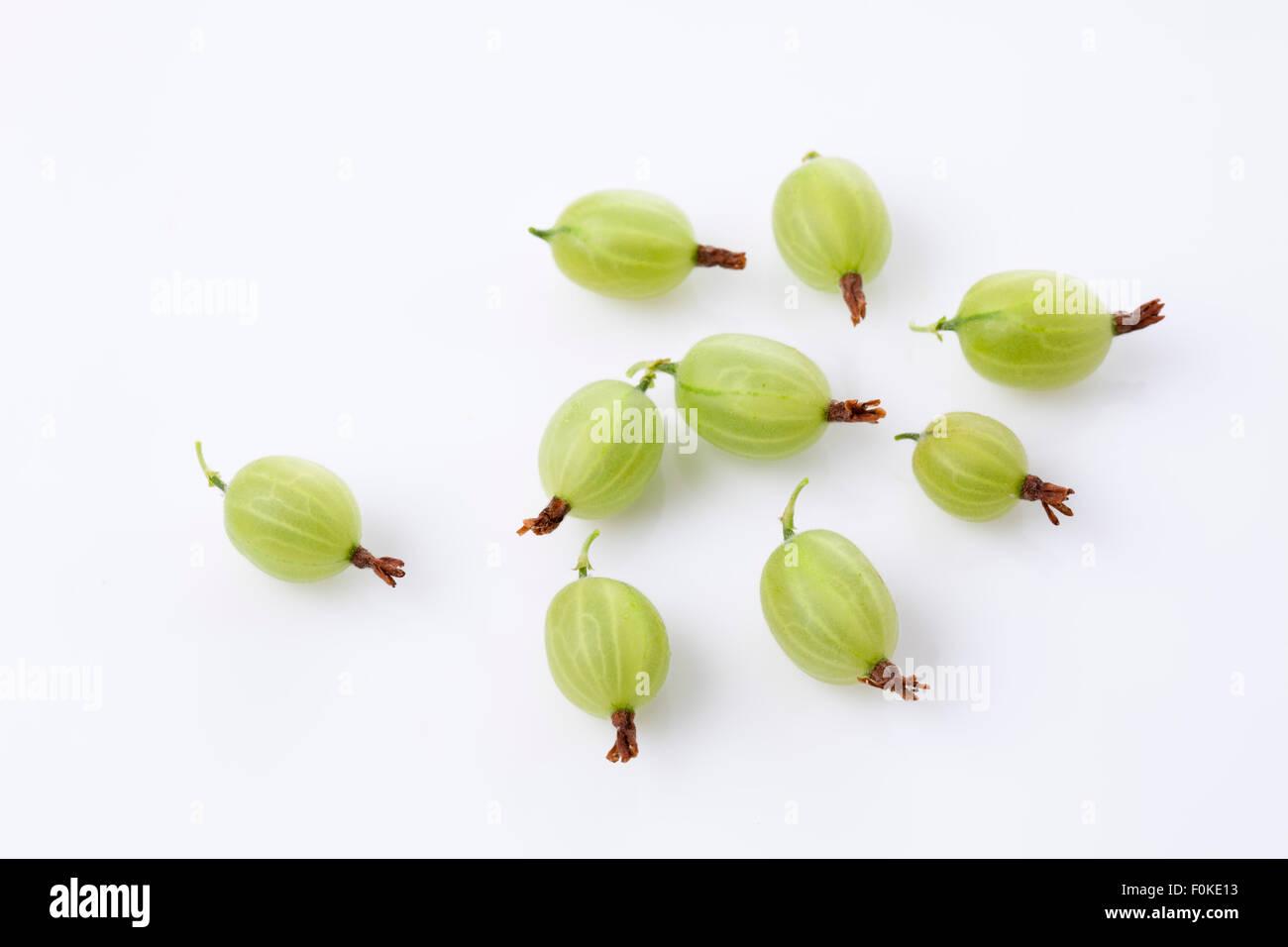 Gooseberries, Ribes uva-crispa - Stock Image