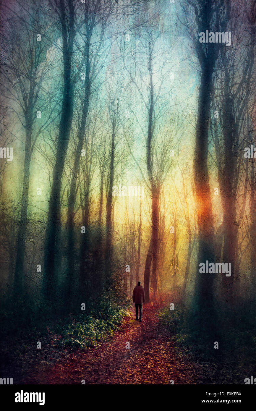 Man on forest path at sunset, digitally manipulated - Stock Image