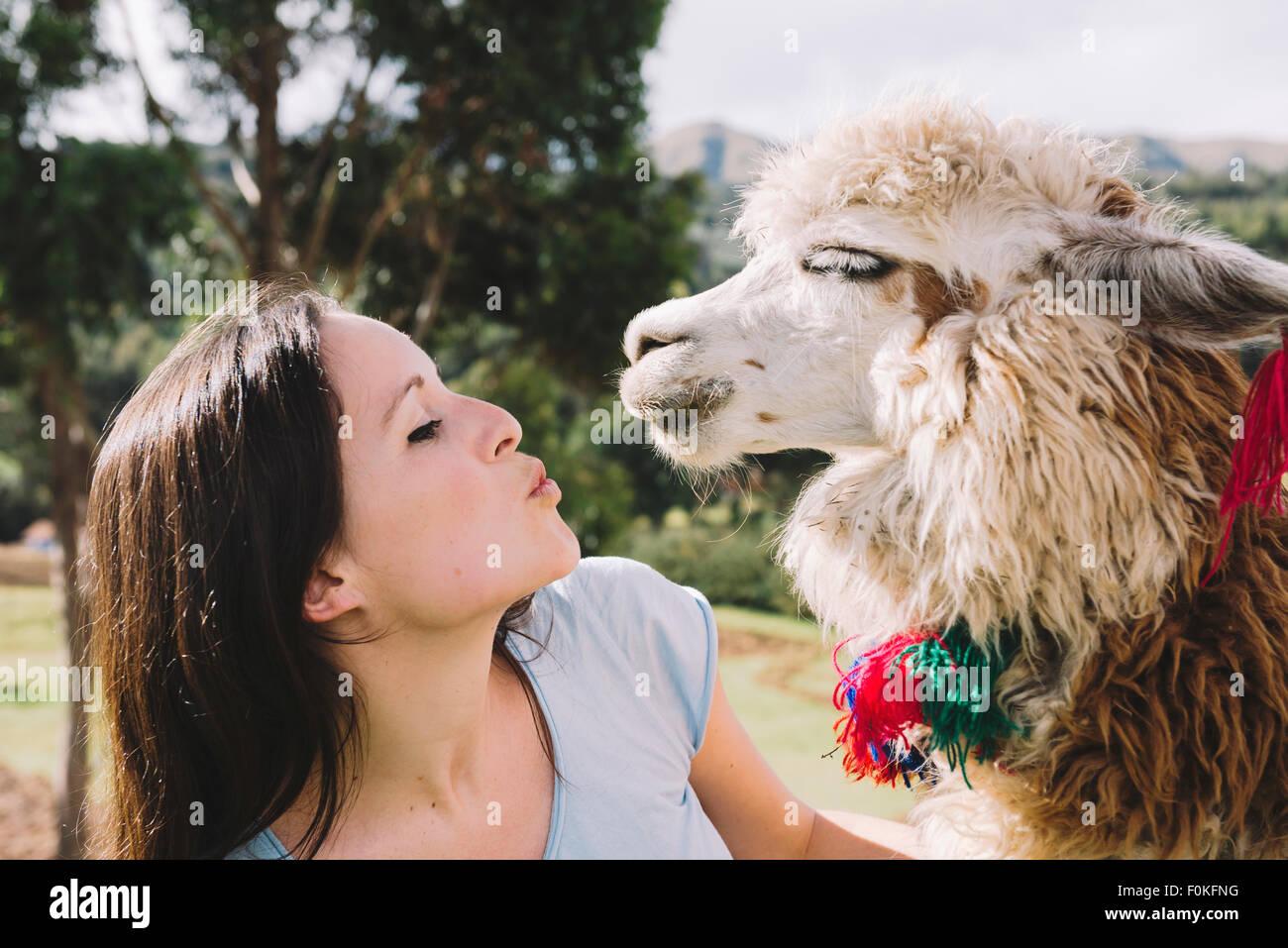Peru, Cusco, young woman face to face to an alpaca - Stock Image