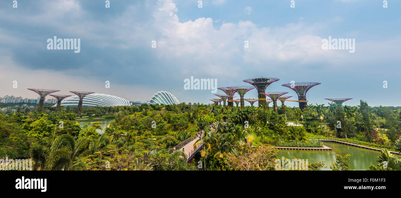 Supertrees, Supertree Grove, Flower Dome Conservatory, Gardens by the Bay, Singapore - Stock Image