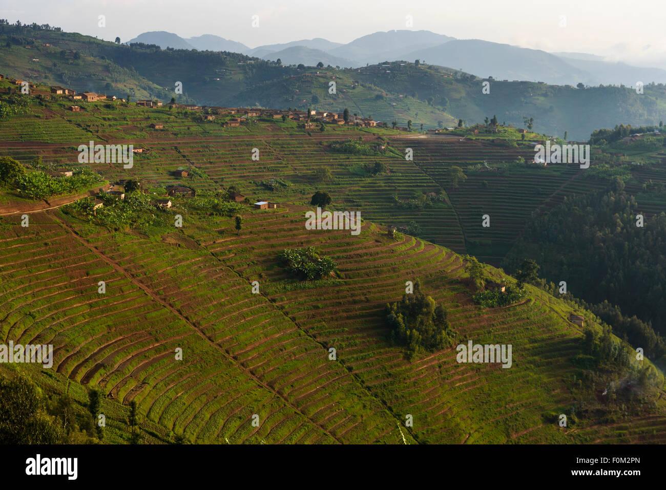 Mountains of western Rwanda, Africa - Stock Image