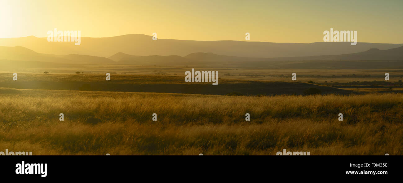 The Great Karoo, South Africa - Stock Image