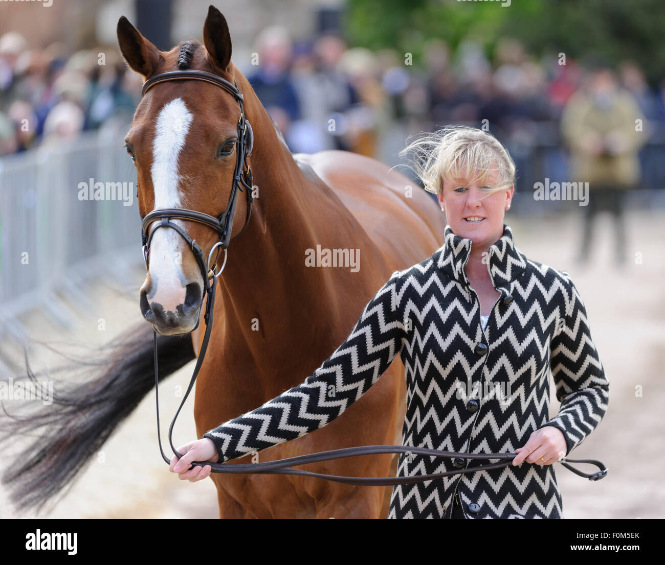 Nicola Wilson and ONE TWO MANY - First horse inspection - Mitsubishi Motors Badminton Horse Trials, Badminton House, - Stock Image
