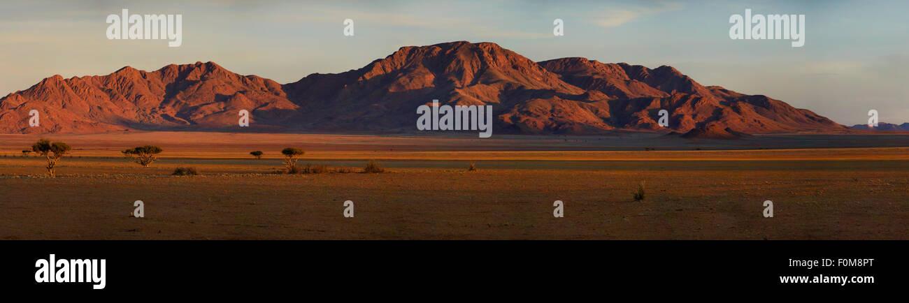 Namibian desert, Namibia, Africa - Stock Image