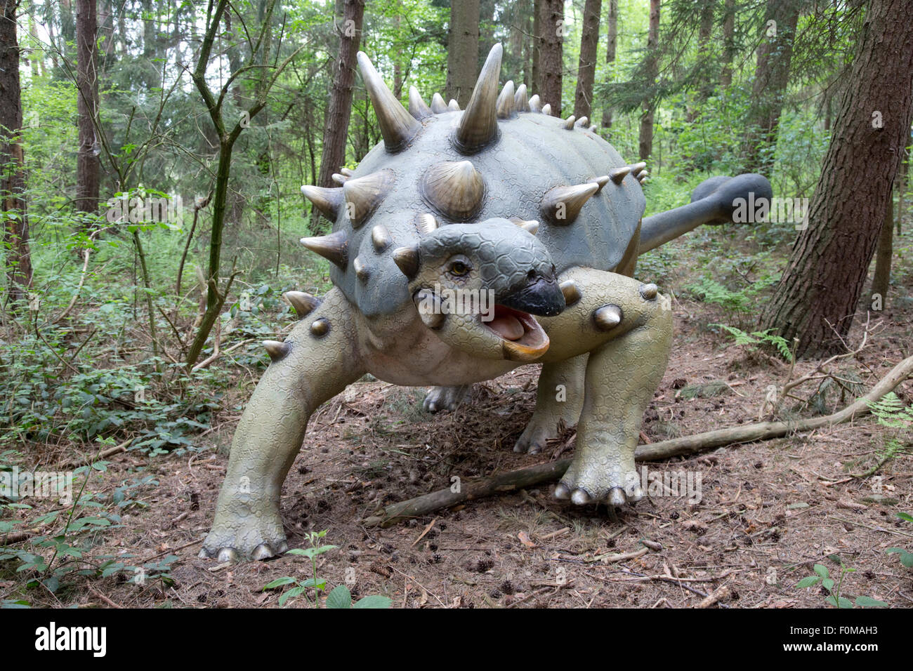 Ankylosaurus is a genus of ankylosaurid dinosaur. Fossils of Ankylosaurus have been found in geologic formations - Stock Image