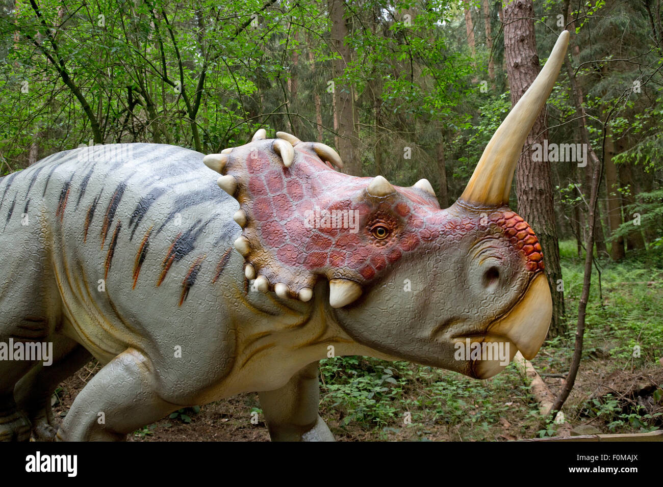 Centrosaurus is a genus of herbivorous ceratopsian dinosaurs from the late Cretaceous of Canada Dinosaurier Park - Stock Image