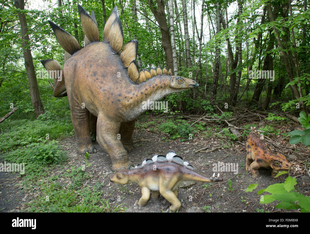 Stegosaurus large extinct Jurassic herbivore Dinosaurier Park Germany - Stock Image