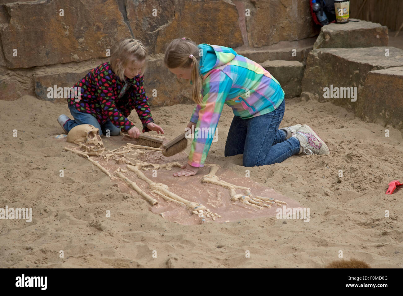 Two young girl archaeologists excavating skeleton Dinosaurier Park Germany - Stock Image
