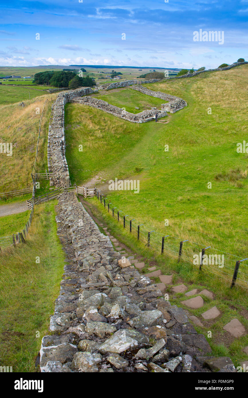 Hadrian's Wall near Housesteads fort, Cumbria, England - Stock Image