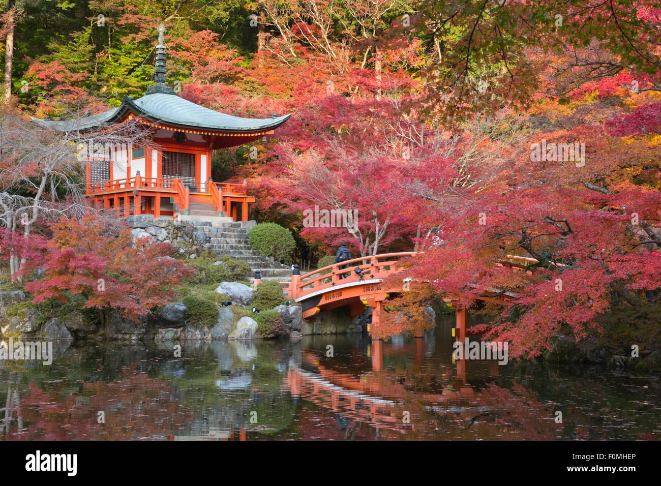 Japanese Temple Garden In Autumn Daigoji Temple Kyoto Japan