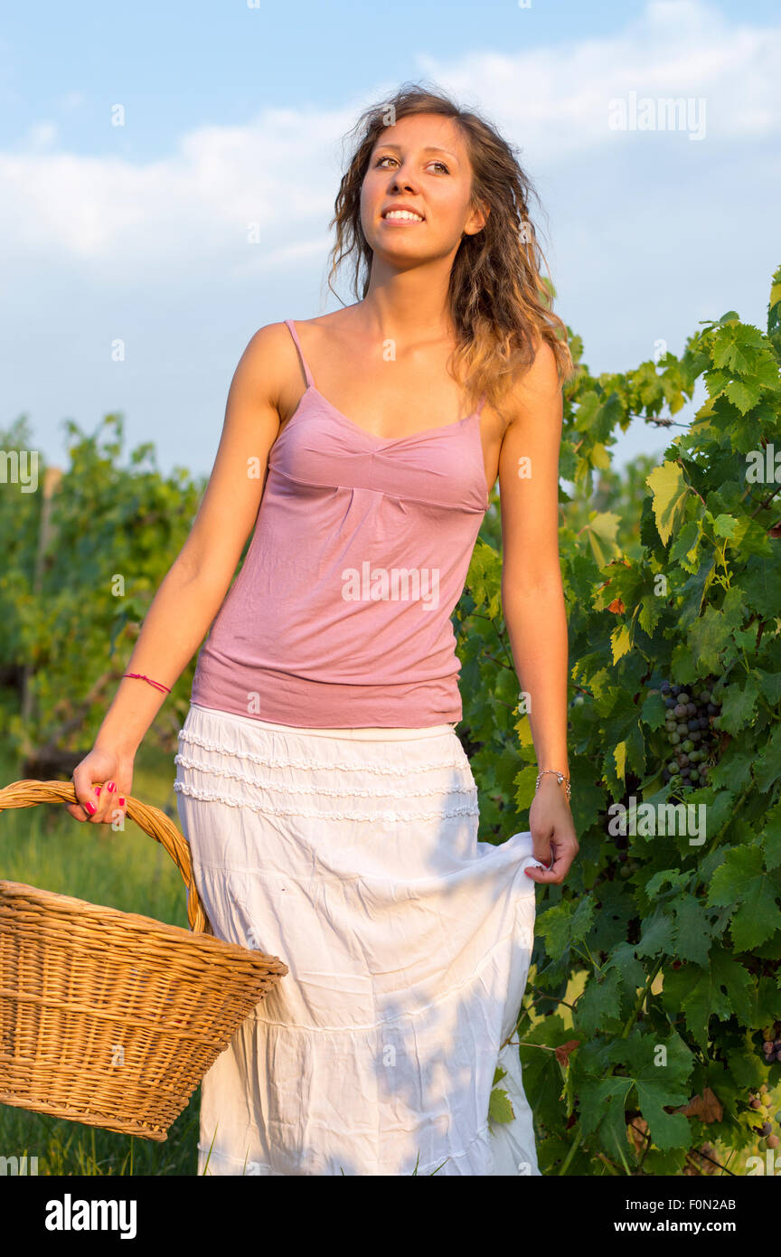 Attractive Happy Brunnette Girl In Vineyard Working On Grape Harvest