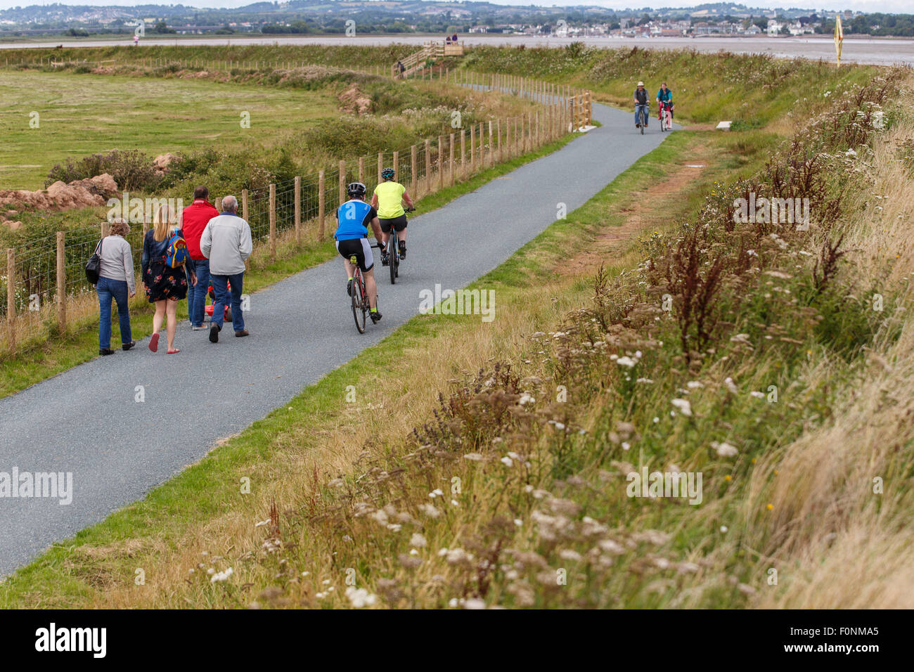 Cyclists and walkers on the river Exe trail and Coast path, west side of the river. - Stock Image