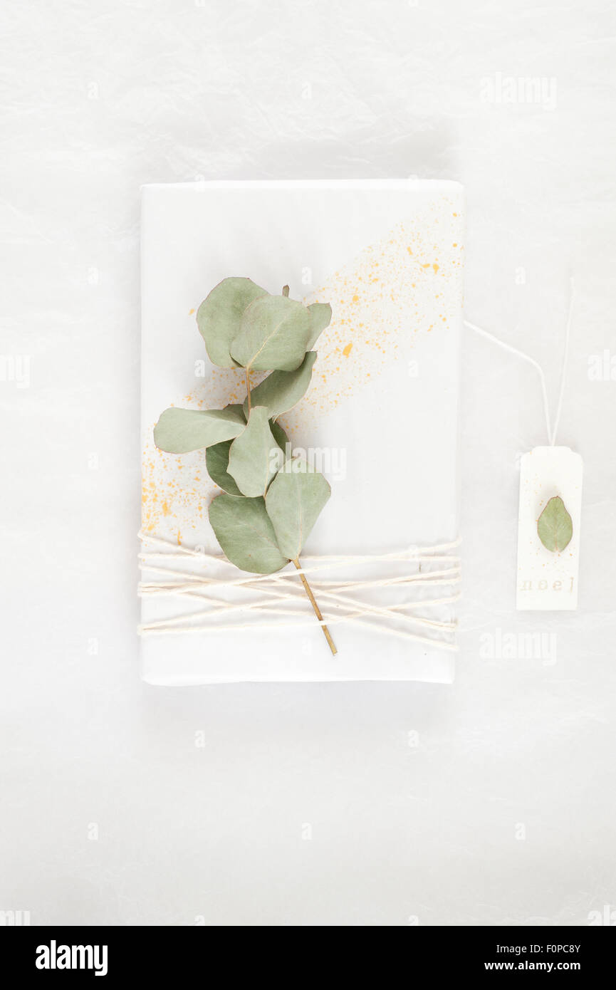 simple gift wrapping idea with white tissue paper splattered with gold paint decorated with twine and a sprig of - Stock Image