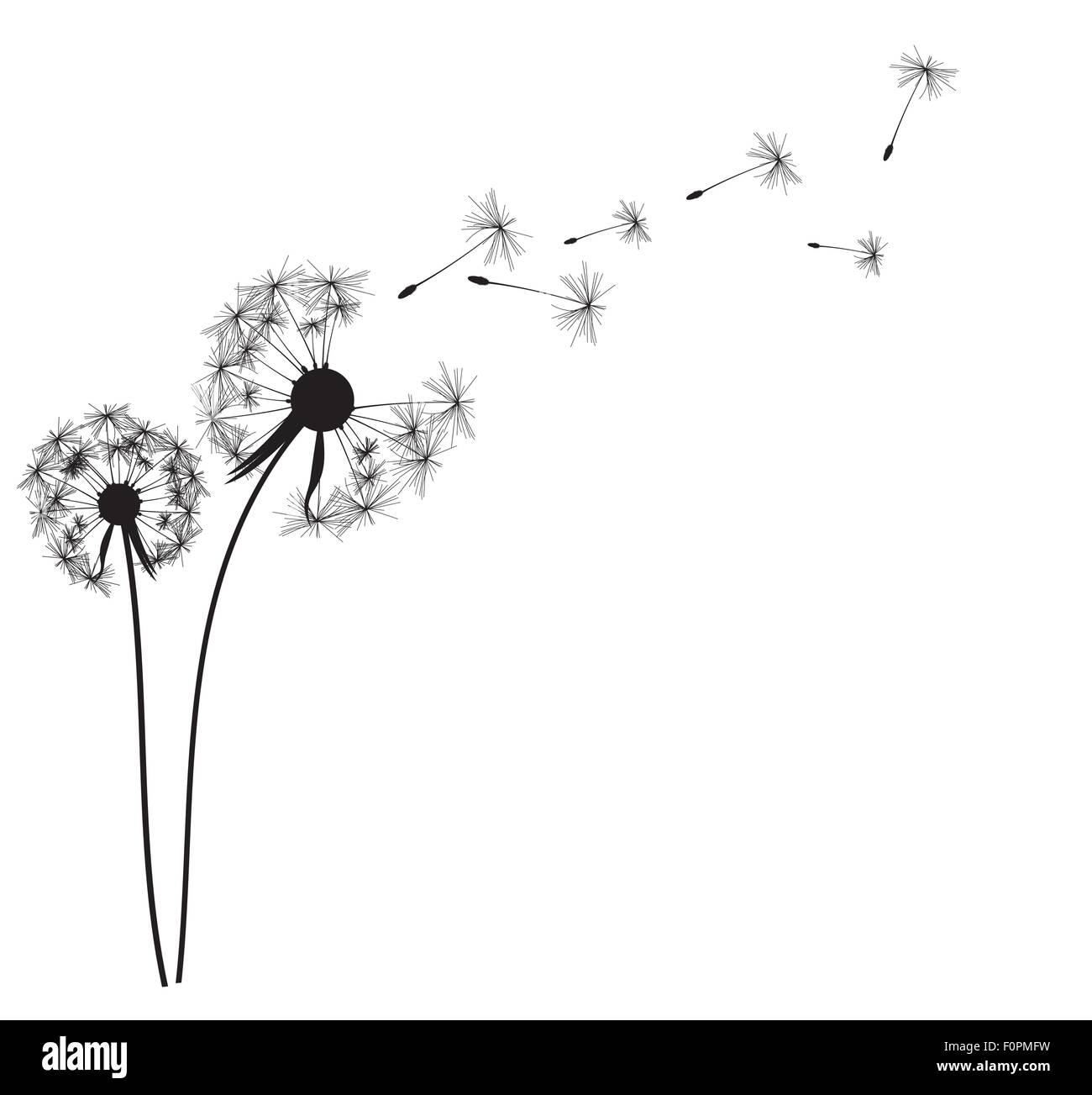 Blowing Dandelion Silhouette Cut Out Stock Images