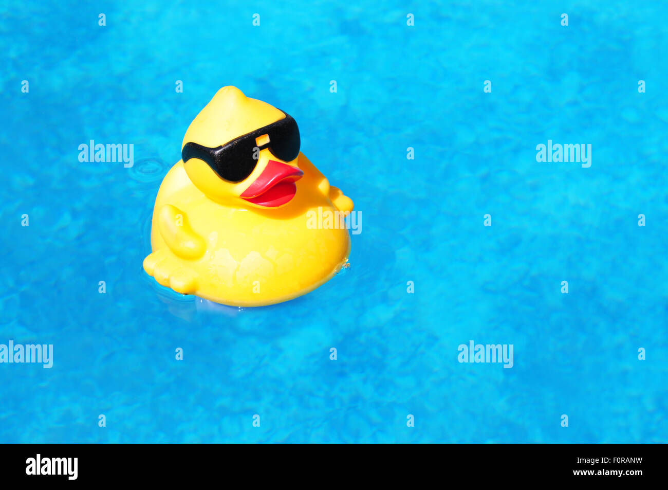 Black Rubber Duck Stock Photos Amp Black Rubber Duck Stock