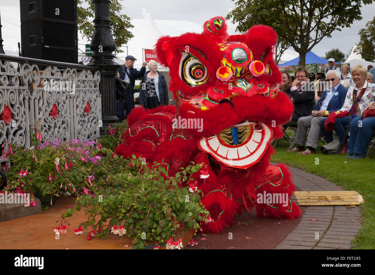 Southport, Merseyside, UK. 20th August, 2015. Red Chinese Dragon, a symbol of good fortune,  at Britain's biggest - Stock Image