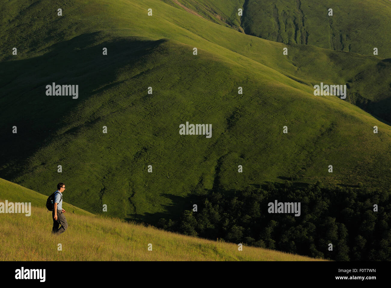 Ecotourist Niel Birnie walking in alpine grasslands in the Tarku mountains Natura 2000 site, Southern Carpathians, - Stock Image