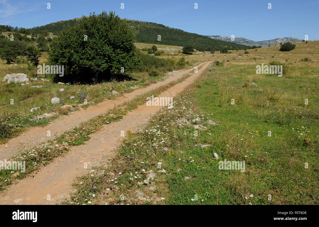 Abandoned farmland due to globalisation, socio-cultural reasons, the Bosnian war and minefields, Velebit Nature - Stock Image