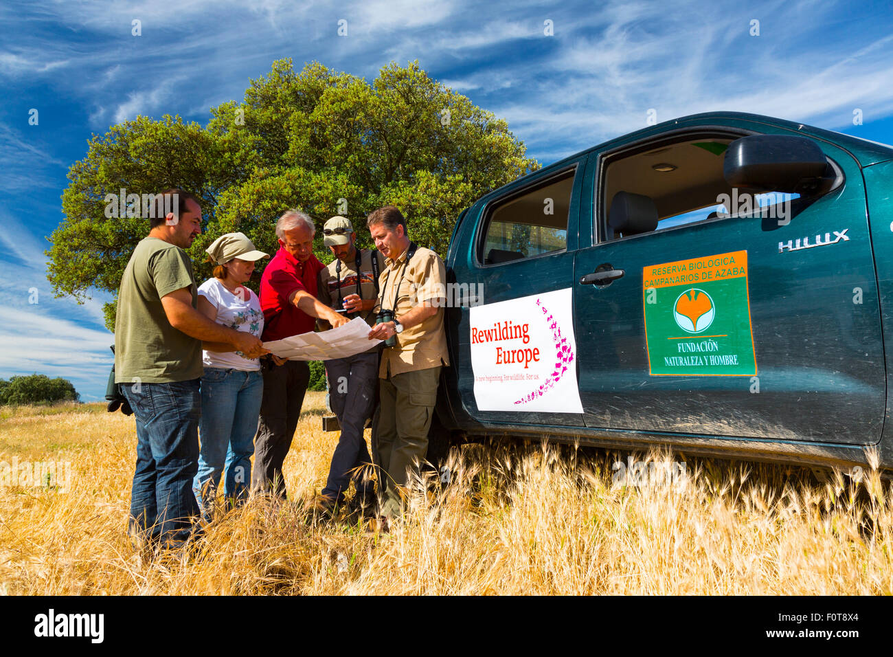 People working for Rewilding Europe project next to vehicle in Campanarios de Azaba Biological Reserve, a rewilding Stock Photo