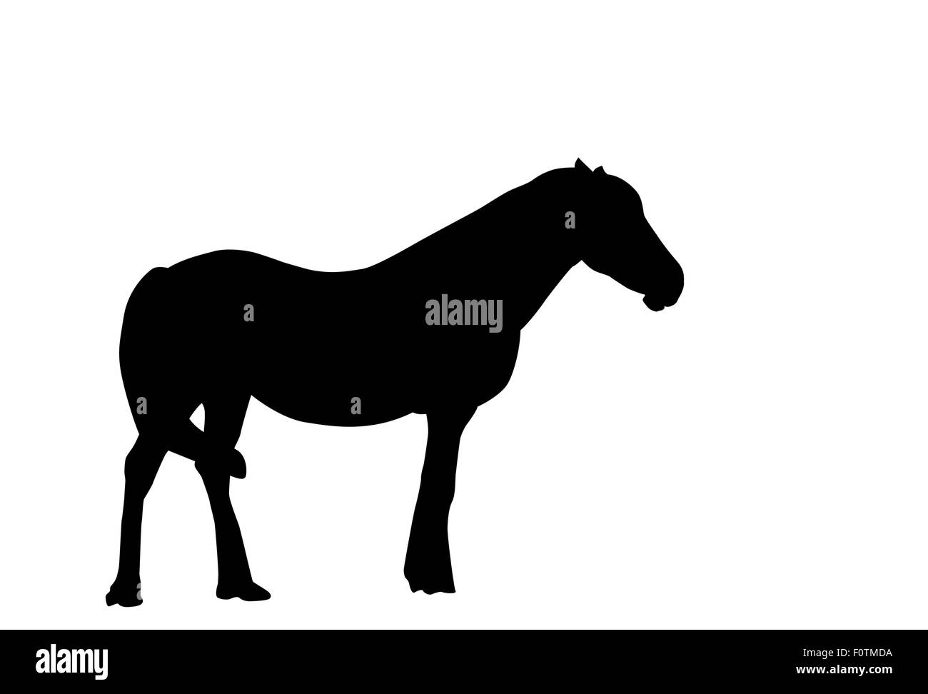 Silhouette Horse. Vector Illustration. - Stock Vector