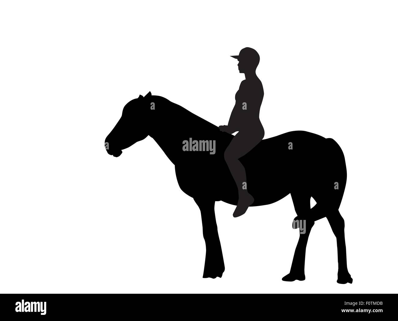 Silhouette of the Rider on the Horse. Vector Illustration. - Stock Vector