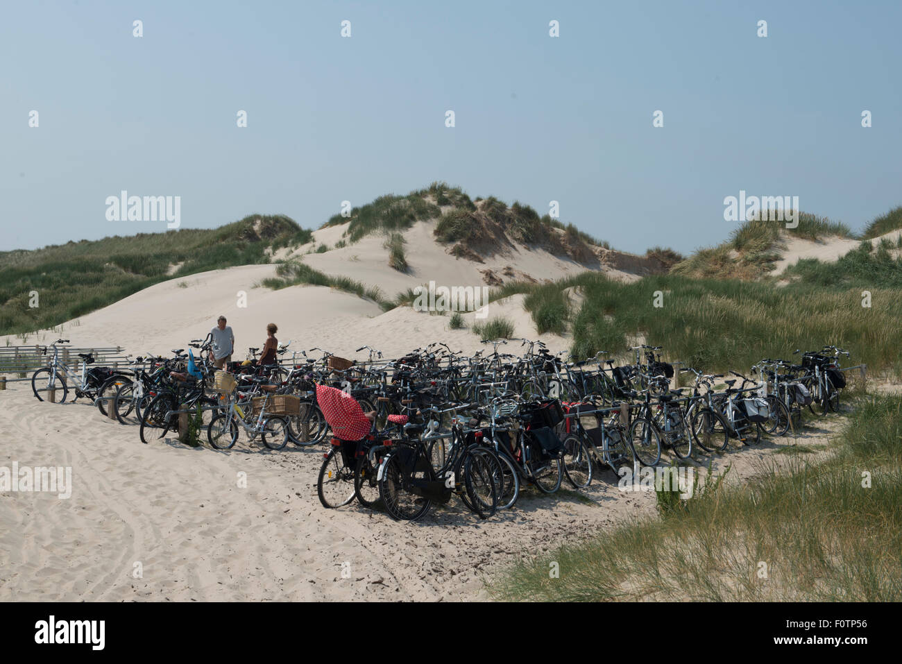 Bicycles on stands in the dunes of Bergen, Netherlands - Stock Image