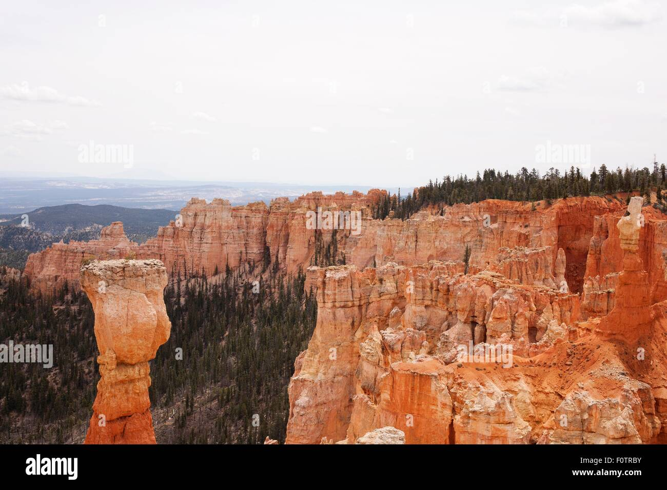 View of pillar rock formation in Bryce Canyon National Park, Utah, USA - Stock Image