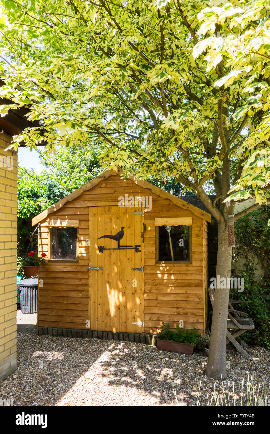 A new wooden garden shed - Stock Image
