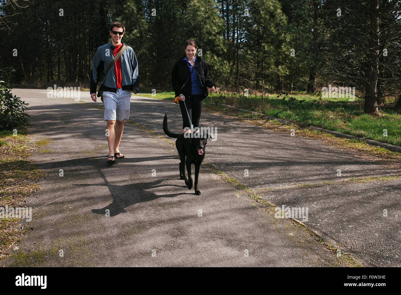Couple walking a dog in sunlit park - Stock Image