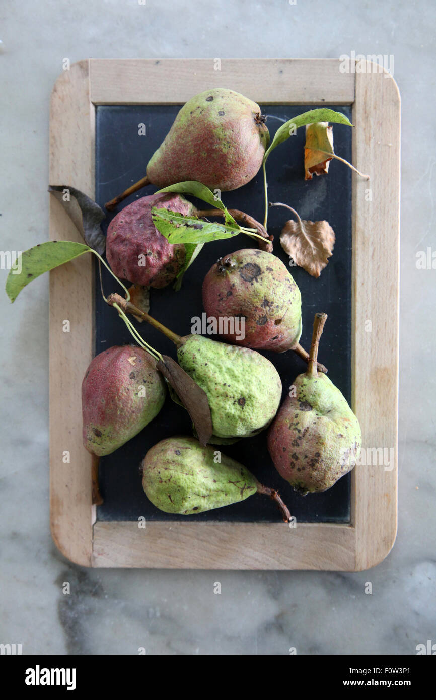 old pears still life - Stock Image