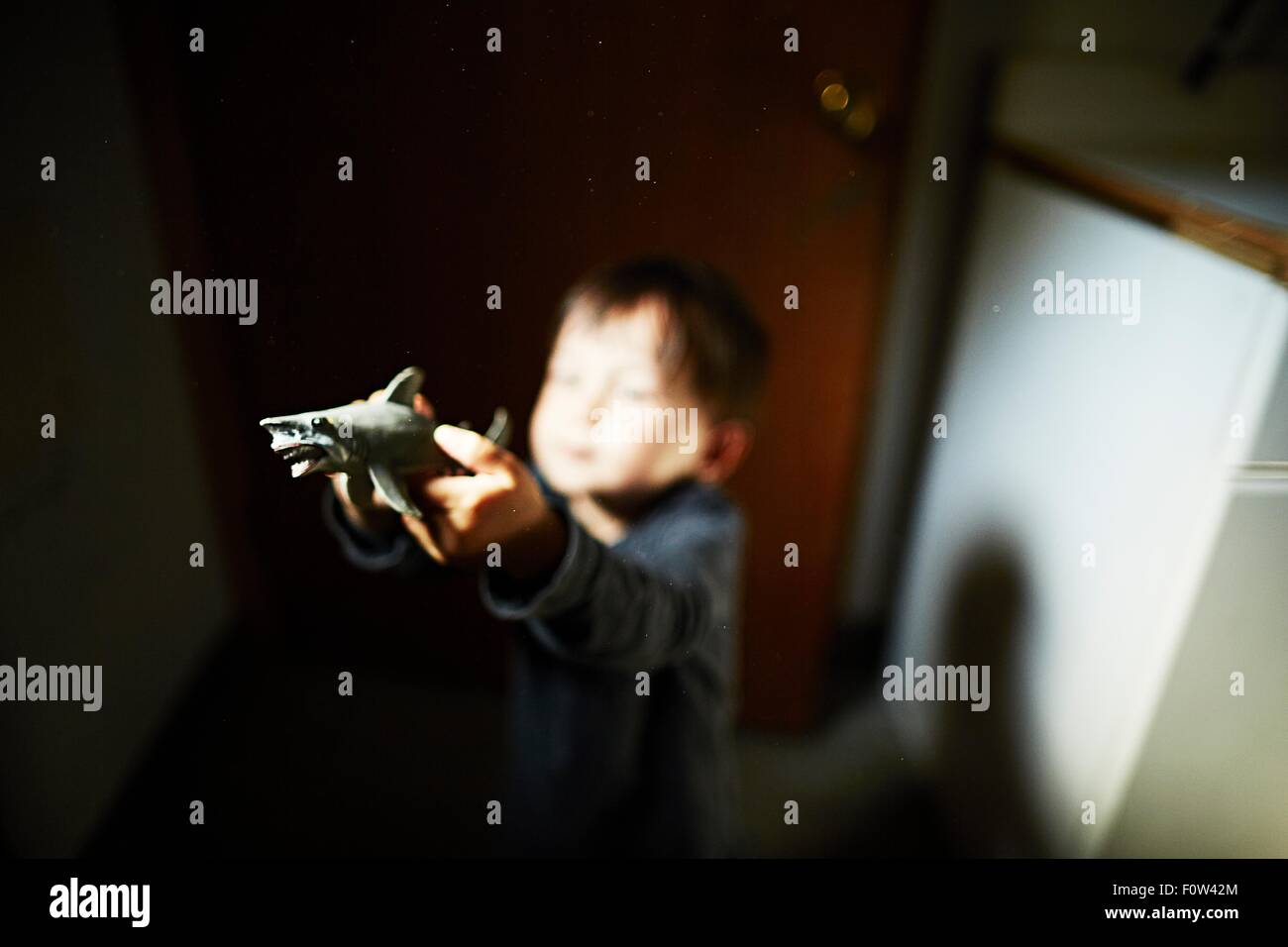 Boy holding up toy shark in kitchen - Stock Image