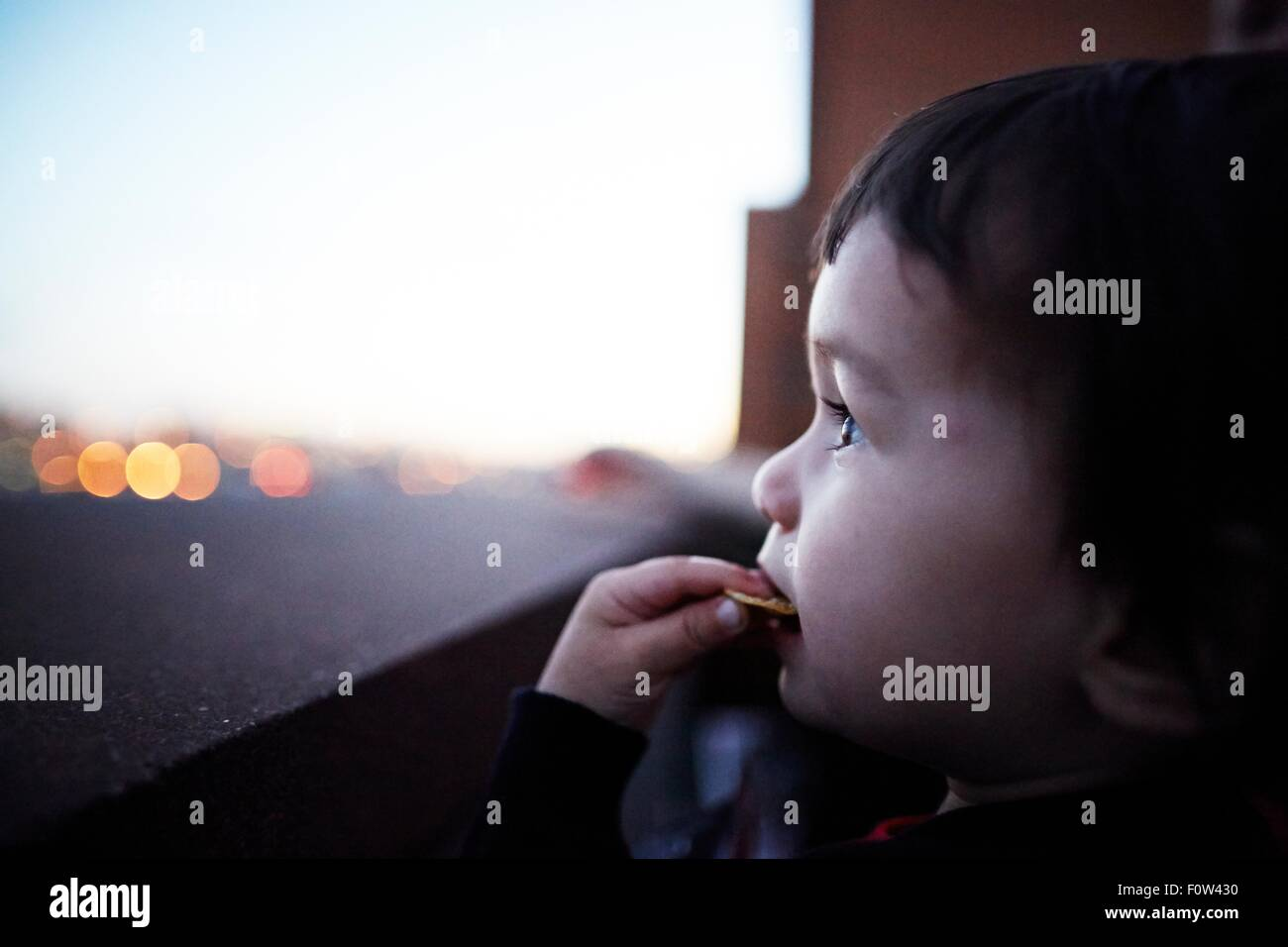 Boy eating biscuit by window - Stock Image